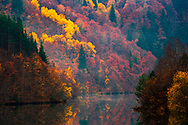 Amazing reflections of an autumn forest in a calm lake