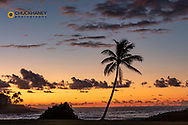 Coconut palm trees silhoutted against vivid sunrise clouds at Poipu Beach in Kauai, Hawaii, USA