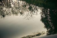 Water reflections on Kozjak lake surface, Plitvice National Park, Croatia