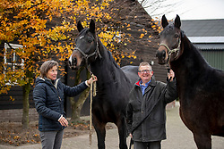 Van Gisbergen Isabel, Van Gisbergen Wil, Fidertanz fokmerries<br /> Fokkerij Isabel en Wil van Gisbergen<br /> © Hippo Foto - Dirk Caremans<br /> 20/11/2018