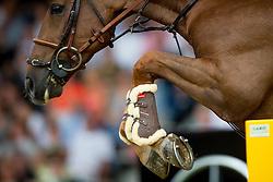 Delestre Simon, (FRA), Ryan Des Hayettes<br /> Individual Final Competition<br /> FEI European Championships - Aachen 2015<br /> © Hippo Foto - Dirk Caremans<br /> 23/08/15