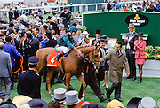 The winning horse and jockey being led into the Winner's Enclosure at Epsom Racecourse on Derby Day, UK