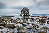 Named for the giant it resembles, the sea stack Hvítserkur emerges from a bath in the ocean.