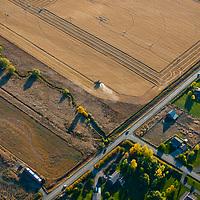 A combine harvest wheat in a field near Bozeman, Montana.