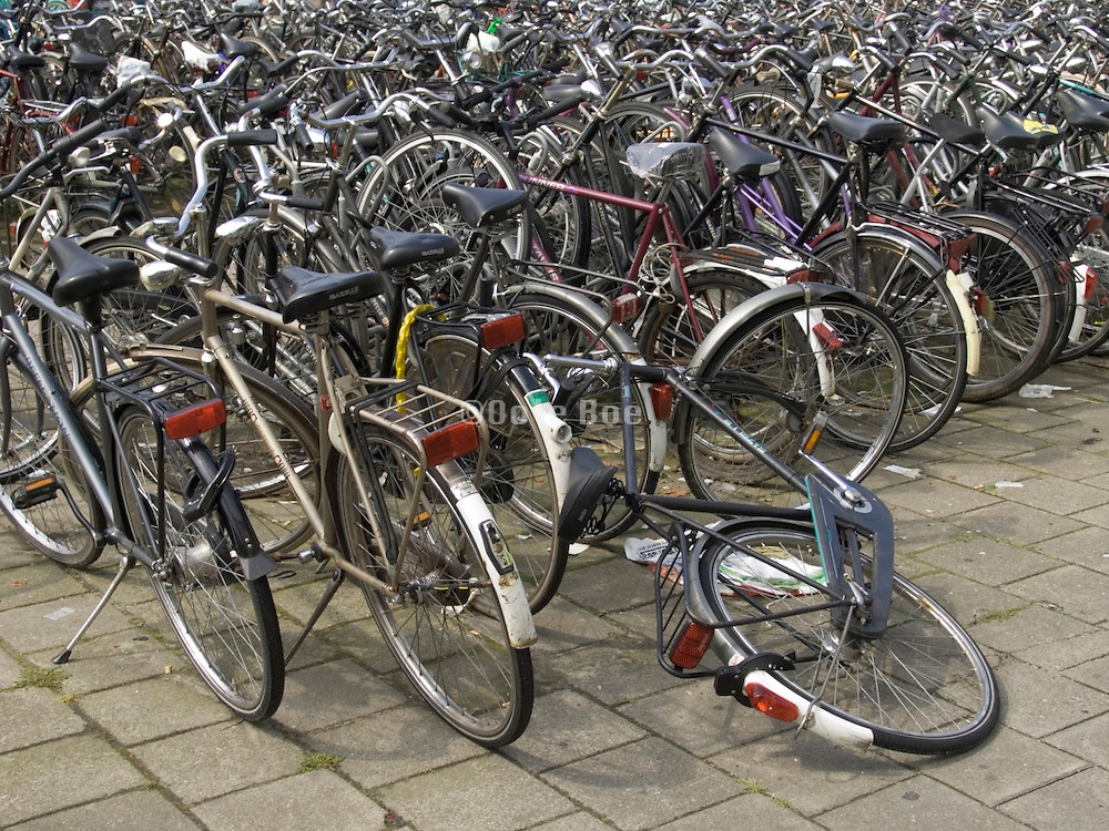 Holland bicycles parked