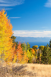 """""""Aspens Above Lake Tahoe 1"""" - Photograph of yellow, orange, red, and green fall colored aspens above a blue Lake Tahoe."""