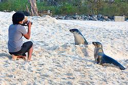 Photographing Galápagos Sea Lions, San Cristóbal