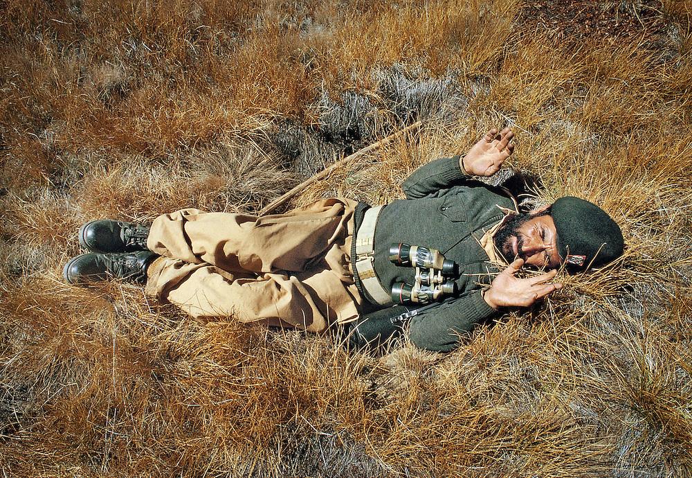 In Deosai plateau, a park ranger shows us the way Himalayan Brown Bears sleep. Baltistan province, Karakoram mountains. Pakistan.