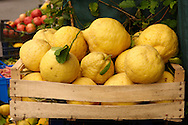 Amalfi coast lemons - Positano, Italy .<br /> <br /> Visit our ITALY HISTORIC PLACES PHOTO COLLECTION for more   photos of Italy to download or buy as prints https://funkystock.photoshelter.com/gallery-collection/2b-Pictures-Images-of-Italy-Photos-of-Italian-Historic-Landmark-Sites/C0000qxA2zGFjd_k