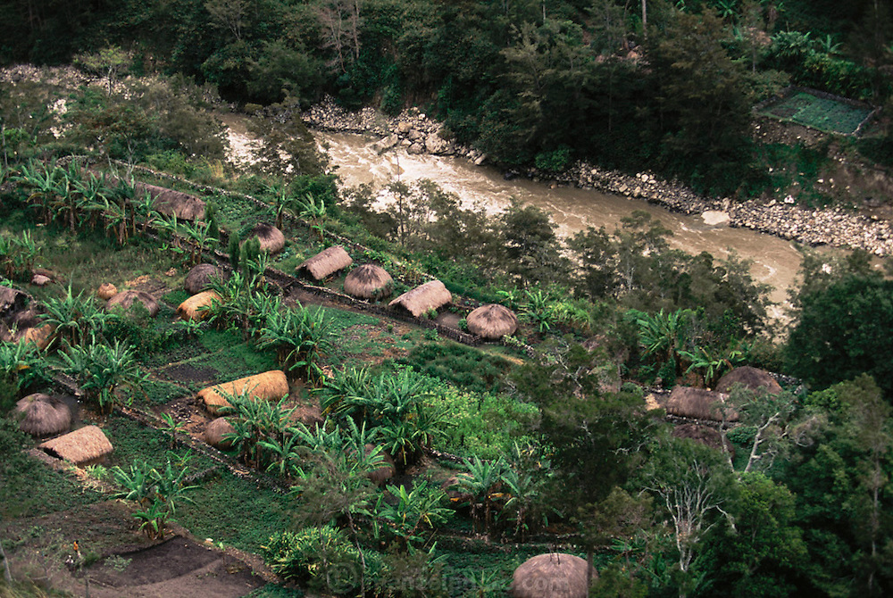 Thatched hut settlement with gardens in the central highlands of the South Baliem Valley, near Kurima, Irian Jaya, Indonesia. Since the making of this photograph, Irian Jaya was renamed Papua.