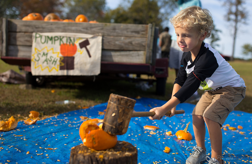 Spencer Zachary, 4, of Trinity, NC.<br /> <br /> Quaker Lake Camp's 2017 Pumpkin Festival.<br /> <br /> Photographed, Saturday, October 21, 2017, in Greensboro, N.C. JERRY WOLFORD  / Perfecta Visuals