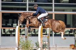 Lemmen Patrick, NED, Jappeloup<br /> Nationaal Kampioenschap KWPN<br /> 6 jarigen springen final<br /> Stal Tops - Valkenswaard 2020<br /> © Hippo Foto - Dirk Caremans<br /> 19/08/2020