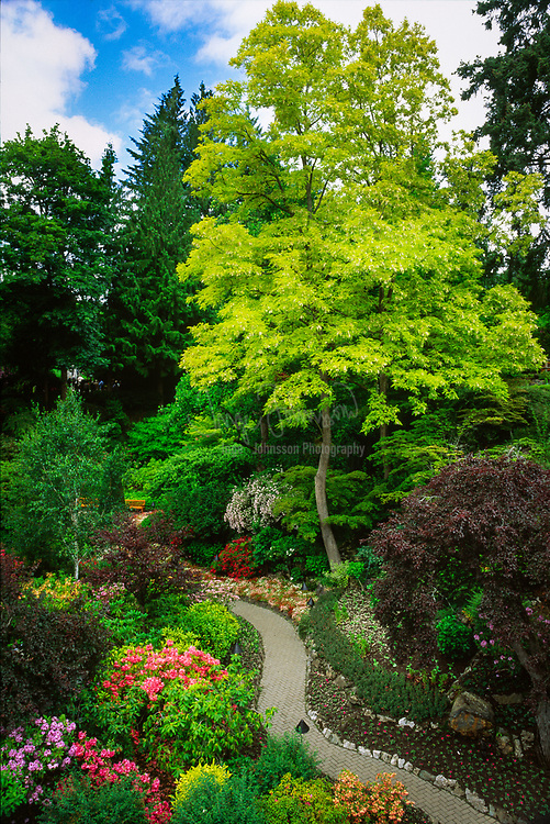 Pathway in Butchart Botanical Gardens in Vancouver, BC, Canada