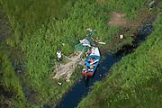Cabucalli<br /> Wetland<br /> North GUYANA<br /> South America
