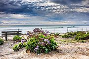 Walking Trail Along Del Mar Beach San Diego County