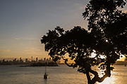 Sydney Harbour view from Sydney Harbour National Park, Vaucluse, Sydney, Australia.
