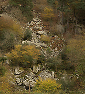The Scalp is a popular wild area on the Dublin/Wicklow border and is characterised  by boulders, pine and elevation. It was created during the last ice age when an enormous lake burst through to leave the characteristic V shaped opening in the landscape.