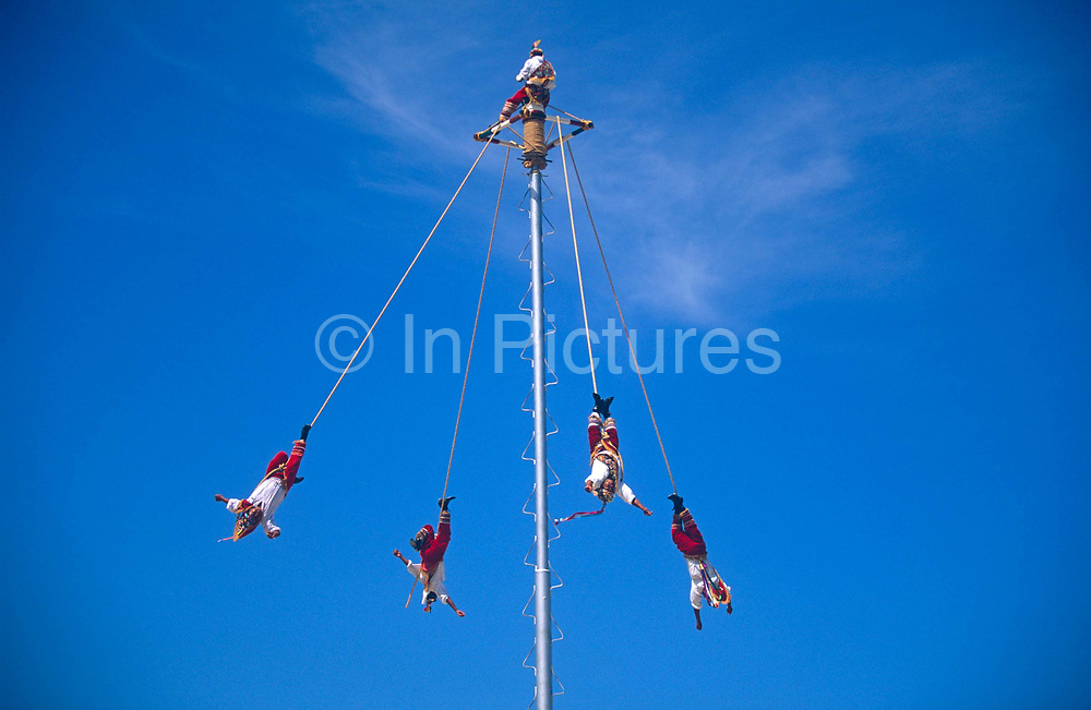 Mexican Papantla Flyers perform a pre-Hispanic ritual dedicated to their sun god, a leap from a 90 foot pole, on 15th May 1996, the Tulum ruins, Yucatan, Mexico. Dressed in their native costumes these men lash themselves to this towering pole with a leather bindings and soar off into space backwards and upside down in the ultimate leap of faith. The Papantla Flyers are Totonac Indians performing an ancient fertility ceremony. As they slowly descend to earth, the 13 revolutions made by the four flyers equal the 52-year span of the Aztec century. They represent earth, water, fire and air and the interweaving of these four elements symbolizes the creation of new life. A fifth man is left on top, dancing on this tiny nine-inch platform while simultaneously playing both a pre-Columbian flute and drum.