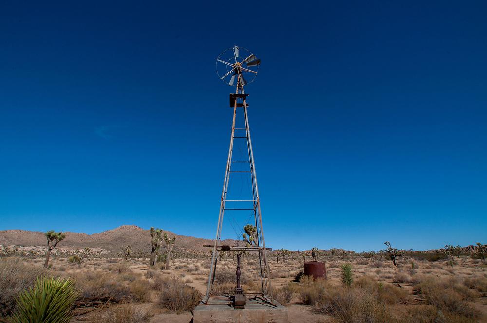 Desert Queen Well, Joshua Tree National Park, California, US