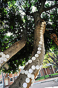 Public artwork on display as part of the annual Trunk Art Wrap Festival in Bassendean, Western Australia. All artworks are made entirely of recycled industrial or domestic waste materials.<br /> <br /> Discarded tops from take-away coffee cups decorate the branches of a small ficus tree