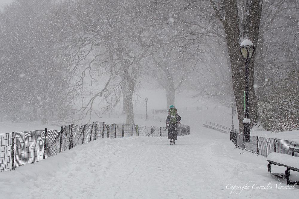 Central Park towards Cedar Hill, Feb. 1, 2021.