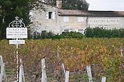 Vineyard. Winery building.  Chateau La Grace Dieu des Prieurs. Saint Emilion, Bordeaux, France