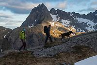 Two female hikers with dog on lead in mountain landscape, Moskenesøy, Lofoten Islands, Norway