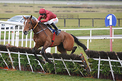 Pallasator ridden by Davy Russell jump the last to win Underwriting Exchange Novice Hurdle during Ryan Air Gold Cup Day of the 2018 Easter Festival at Fairyhouse Racecourse, Ratoath, Co. Meath.