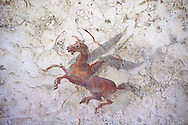 Roman fresco wall decorations from Villas of Rome depicting Pegasus. Museo Nazionale Romano ( National Roman Museum), Rome, Italy. .<br /> <br /> If you prefer to buy from our ALAMY PHOTO LIBRARY  Collection visit : https://www.alamy.com/portfolio/paul-williams-funkystock/national-roman-museum-rome-fresco.html<br /> <br /> Visit our ROMAN ART & HISTORIC SITES PHOTO COLLECTIONS for more photos to download or buy as wall art prints https://funkystock.photoshelter.com/gallery-collection/The-Romans-Art-Artefacts-Antiquities-Historic-Sites-Pictures-Images/C0000r2uLJJo9_s0