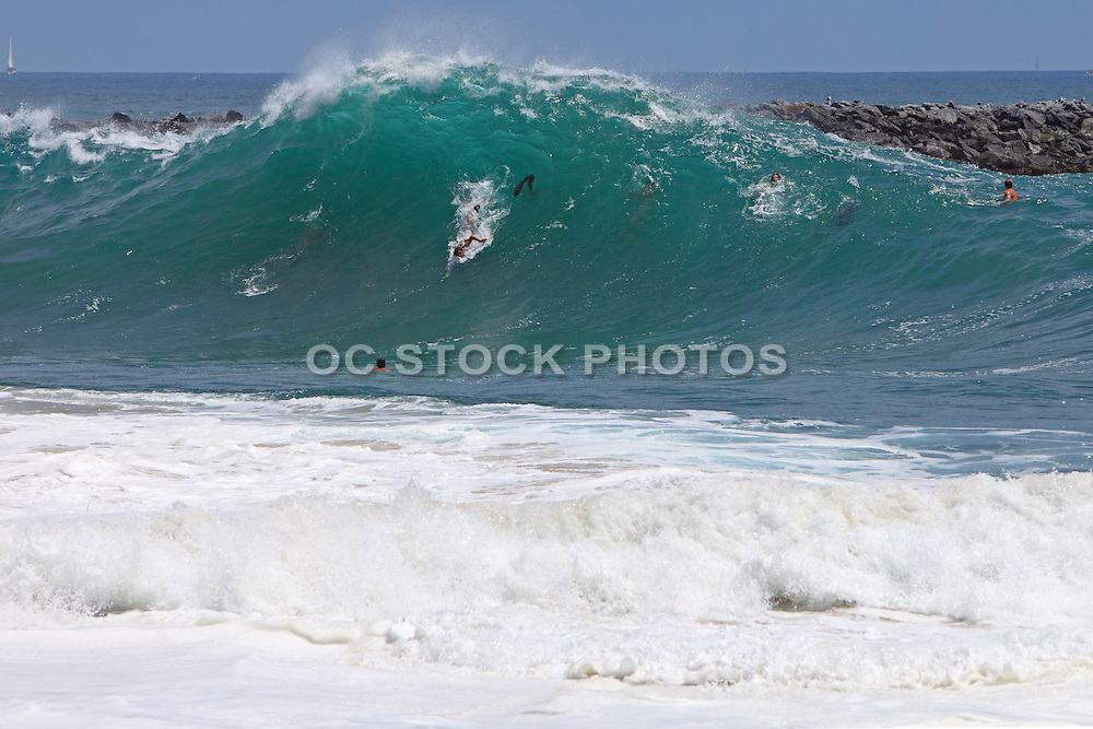 Body Surfers At The Wedge In Newport
