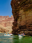 Day 4 of 16 days boating 226 miles down the Colorado River in Grand Canyon National Park, Arizona, USA.