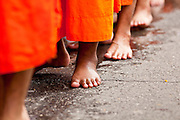 "15 JULY 2011 - PHRA PHUTTHABAT, SARABURI, THAILAND:  Monks walk in a line during the Tak Bat Dok Mai at Wat Phra Phutthabat in Saraburi province of Thailand, Friday, July 15. Wat Phra Phutthabat in Phra Phutthabat, Saraburi, Thailand, is famous for the way it marks the beginning of Vassa, the three-month annual retreat observed by Theravada monks and nuns. The temple is highly revered in Thailand because it houses a footstep of the Buddha. On the first day of Vassa (or Buddhist Lent) people come to the temple to ""make merit"" and present the monks there with dancing lady ginger flowers, which only bloom in the weeks leading up Vassa. They also present monks with candles and wash their feet. During Vassa, monks and nuns remain inside monasteries and temple grounds, devoting their time to intensive meditation and study. Laypeople support the monastic sangha by bringing food, candles and other offerings to temples. Laypeople also often observe Vassa by giving up something, such as smoking or eating meat. For this reason, westerners sometimes call Vassa the ""Buddhist Lent."" The tradition of Vassa began during the life of the Buddha. Most of the time, the first Buddhist monks who followed the Buddha did not stay in one place, but walked from village to village to teach. They begged for their food and often slept outdoors, sheltered only by trees. But during India's summer rainy season living as homeless ascetics became difficult. So, groups of monks would find a place to stay together until the rain stopped, forming a temporary community. Wealthy laypeople sometimes sheltered monks on their estates. Eventually a few of these patrons built permanent houses for monks, which amounted to an early form of monastery.    PHOTO BY JACK KURTZ"