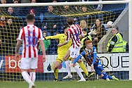 Stoke City forward Peter Crouch (25) scores during the The FA Cup 3rd round match between Shrewsbury Town and Stoke City at Greenhous Meadow, Shrewsbury, England on 5 January 2019.
