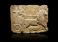 Hittite monumental relief sculpted orthostat stone panel. Limestone, Karkamıs, (Kargamıs), Carchemish (Karkemish), 900-700 B.C. Hunting carriage. Anatolian Civilisations Museum, Ankara, Turkey.<br /> <br /> Two human figures; one handling the carriage, the other throwing arrows. Both figures are wearing a headdress shaped like a skullcap. The dagger at the waist of the figure throwing arrow draws attention. There is an animal between the legs of the horse having an aigrette over its head.  <br /> <br /> Against a black background. .<br />  <br /> If you prefer to buy from our ALAMY STOCK LIBRARY page at https://www.alamy.com/portfolio/paul-williams-funkystock/hittite-art-antiquities.html  - Type  Karkamıs in LOWER SEARCH WITHIN GALLERY box. Refine search by adding background colour, place, museum etc.<br /> <br /> Visit our HITTITE PHOTO COLLECTIONS for more photos to download or buy as wall art prints https://funkystock.photoshelter.com/gallery-collection/The-Hittites-Art-Artefacts-Antiquities-Historic-Sites-Pictures-Images-of/C0000NUBSMhSc3Oo