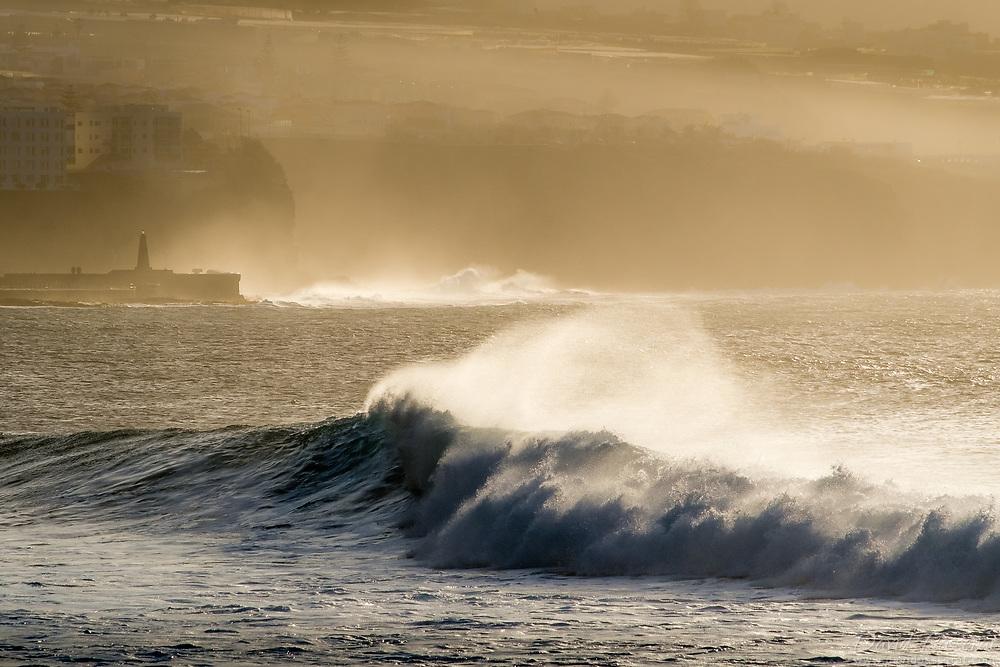 Storming waves in wind  in Puerto de la Cruz