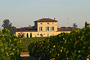 Chateau Lafleur Petrus  and vineyard, in Pomerol, a Moueix property with 90% Merlot