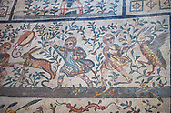 Close up detail picture of the Roman mosaics of the Room of the Chidrens's Hunt depicting children hunting animals, room no 44 at the Villa Romana del Casale, first quarter of the 4th century AD. Sicily, Italy. A UNESCO World Heritage Site.<br /> <br /> The Roman mosaic on the floor of the cubicle of the Child Hunt in the Villa Romana del Casale is divided into three registers with a floral theme.<br /> <br /> In the first register boys are spearing a hare with a venabulum ( spear) while to their right another boy has trapped a duckling. <br /> <br /> In the second register tree young hunters are portrayed being attacked by animals, one boy has fallen down having been bitten on the calf by a weasel. The boy in the middle has his hands raised calling for help and to his right a boy is about to be attacked bu a cockerel.<br /> <br /> In the lower register a boy is holding a raised club about to hit a peacock while another boy is spearing a goat and another is using a shield to protect himself from a Great Bustard. .<br /> <br /> If you prefer to buy from our ALAMY PHOTO LIBRARY  Collection visit : https://www.alamy.com/portfolio/paul-williams-funkystock/villaromanadelcasale.html<br /> Visit our ROMAN MOSAICS  PHOTO COLLECTIONS for more photos to buy as buy as wall art prints https://funkystock.photoshelter.com/gallery/Roman-Mosaics-Roman-Mosaic-Pictures-Photos-and-Images-Fotos/G00008dLtP71H_yc/C0000q_tZnliJD08