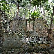 L'Esperance Ruins, St John, USVI