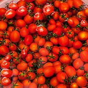 2011 08 21 Bhai Sha Yunnan Kina China<br /> Lokal matmarknad i Bhai Sha<br /> Frukt och grönsaker<br /> Tomater<br /> <br /> ----<br /> FOTO : JOACHIM NYWALL KOD 0708840825_1<br /> COPYRIGHT JOACHIM NYWALL<br /> <br /> ***BETALBILD***<br /> Redovisas till <br /> NYWALL MEDIA AB<br /> Strandgatan 30<br /> 461 31 Trollhättan<br /> Prislista enl BLF , om inget annat avtalas.