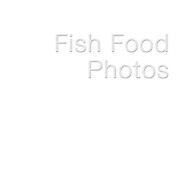 --- FISH FOOD PHOTOS---