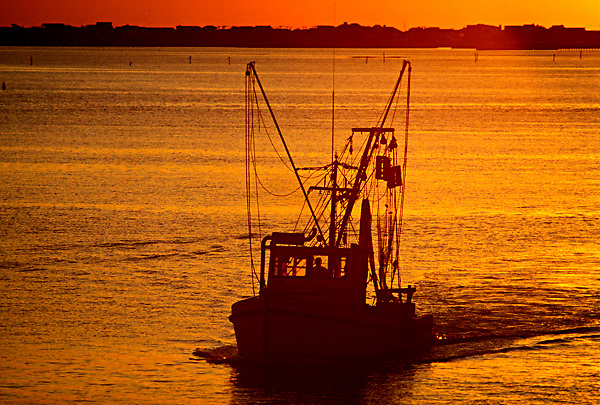 Stock photo of the silhouette of a shrimp boat in Galveston.