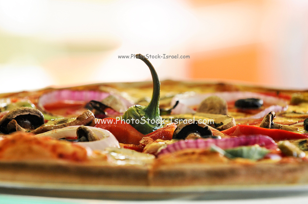 Low view of a baked Onion and pepper pizza