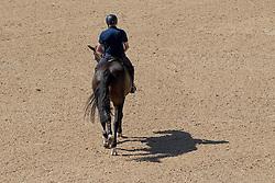 Whitaker John, GBR, Ornellaia<br /> Olympic Games Rio 2016<br /> © Hippo Foto - Dirk Caremans<br /> 13/08/16