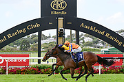 Opie Bosson on Amarelinha wins Race 8, McKee Family Sunline Vase (G3) 2100.<br /> Vodafone Derby Day at Ellerslie Race Course, Auckland on Sunday 7th March 2021 during lockdown level 2.<br /> Copyright photo: Alan Lee / www.photosport.nz