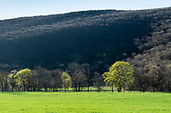 Cornwall, New York - A view of Clove Brook Farm and Schunnemunk Mountain on April. 16, 2019.