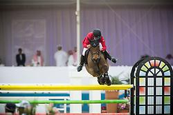 CHI Al Shaqab - Doha 2013<br /> © Dirk Caremans