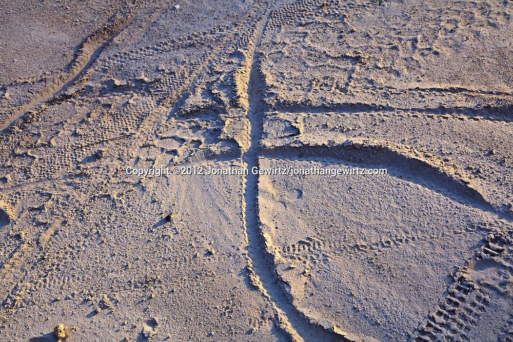 """Bicycle and other tire tracks on sandy soil, in the form of an """"X"""". WATERMARKS WILL NOT APPEAR ON PRINTS OR LICENSED IMAGES."""