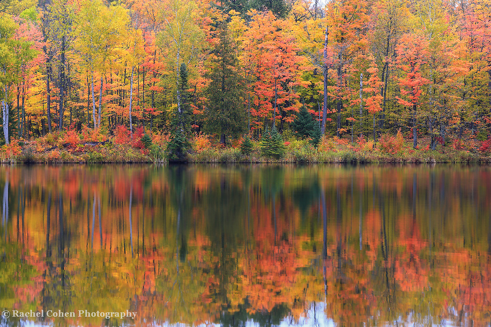 """""""Lake Plumbago Autumn""""<br /> <br /> On a misty and foggy day the fall colors really pop in the forest around Lake Plumbago!"""