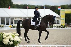 Francis Shelly, (USA), Danilo <br /> Grand Prix CDI4*<br /> CDIO Hagen 2015<br /> © Hippo Foto - Stefan Lafrentz<br /> 10/07/15