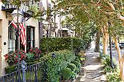 Homes along Adger's Wharf in historic Charleston, SC.